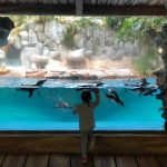 Tamasya ke Taman Safari pt.2